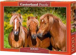 Puzzle koně 1000dílků