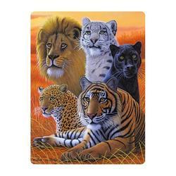 Pohlednice 3D 16cm - velké kočky (25)