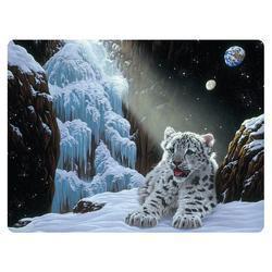 Pohlednice 3D 16cm - sněžný leopard mládě (25)