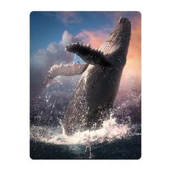 Pohlednice 3D 16cm - velryba (25)