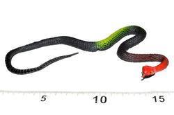 Had gumový(50ks)