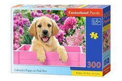 Puzzle labrador štěně 300dílků