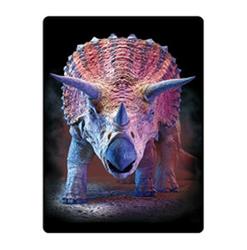 Pohlednice 3D 16cm - triceratops (25)