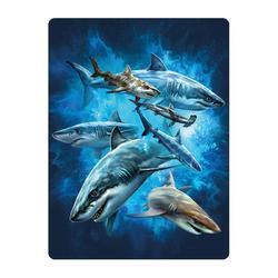 Pohlednice 3D 16cm - žraloci (25)