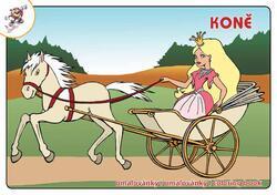 Omalovánky koně