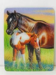 Magnet 3D 7x9cm - koně (25)