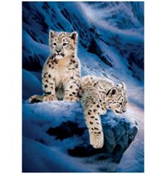 Obrázek 3D 30x40cm - sněžný leopard