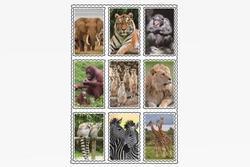 Nálepky 3D 9ks set-safari(25)