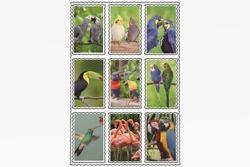 Nálepky 3D 9ks set- tropické ptactvo (25)