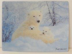 Pohlednice 3D 16cm - lední medvěd (25)