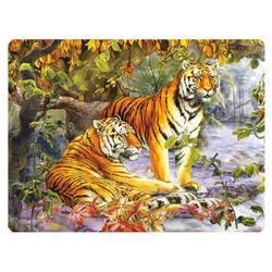 Pohlednice 3D 16cm - tygři (25)
