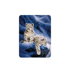 Magnet 3D 7x9cm - sněžní leopardí (25)