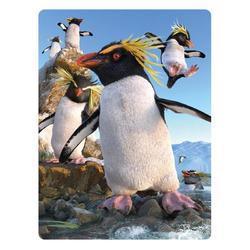 Pohlednice 3D 16cm - tučňák skalní (25)