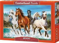 Puzzle koně 2000dílků