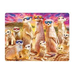 Pohlednice 3D 16cm - surikaty s brýlemi (25)