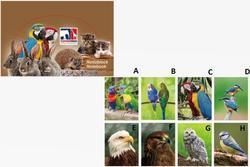 Bloček 3D 8,25x6,4cm - ptáci (80)