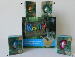 Vejce rostoucí koala (12)