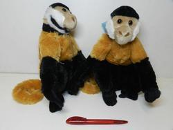 Opice malpa kapucínská plyš 28cm(6ks/bal)