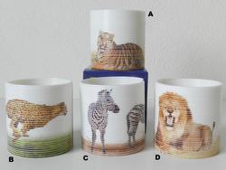 Pružina safari 6,5cm, 4druhy