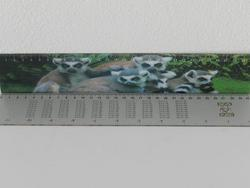 Pravítko 3D lemur