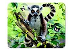 Magnet 3D Lemur 9x7cm (20)