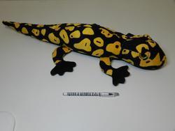 Mlok černo-žlutý plyš, 68cm