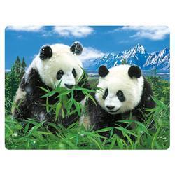 Pohlednice 3D 16cm - pandy (25)