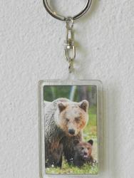 Klíčenka 3D 3,6x5,6cm - medvěd(12ks/bal)