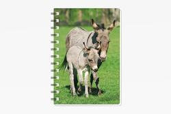 Notes 3D 9,3x13,5cm - osel (12)