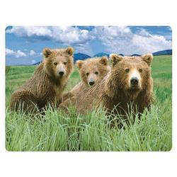Pohlednice 3D 16cm - medvěd hnědý (25)
