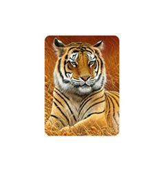 Magnet 3D 7x9cm - tygr hnědý ležící (25)