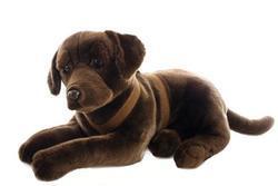 Pes labrador hnědý ležící plyš 68cm