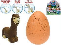 Rostoucí vejce alpaka JUMBO 11cm, 4dr (6)