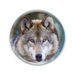 Magnet kulatý 5cm - vlk (12)