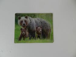 Magnet 3D 7x9cm-medvědí rodina
