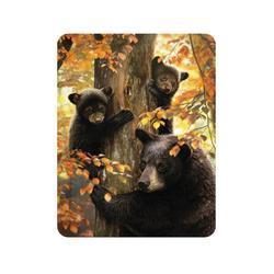 Magnet 3D 7x9cm - medvědi na stromě (25)