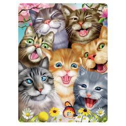 Pohlednice 3D 16cm - bláznivé kočky (25)