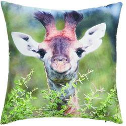 Polštář S žirafa