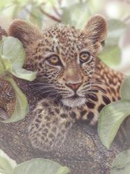 Pohlednice 3D 16cm - leopard (25)