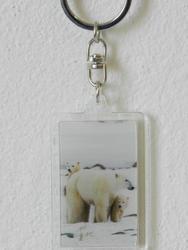Klíčenka 3D 3,6x5,6cm - lední medvěd(24ks/bal)