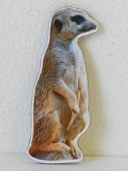 Magnetka dřevěná surikata