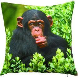 Polštář S šimpanz