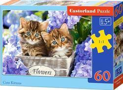 Puzzle kočičky 60dílků